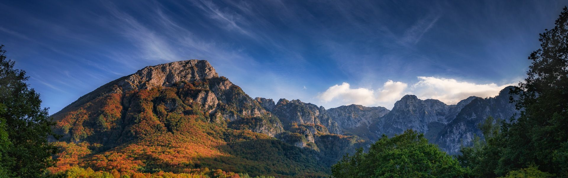 Val Fondillo, Coppo del Principe, Moricento, Val Cervara, Coppo del Morto beech forests