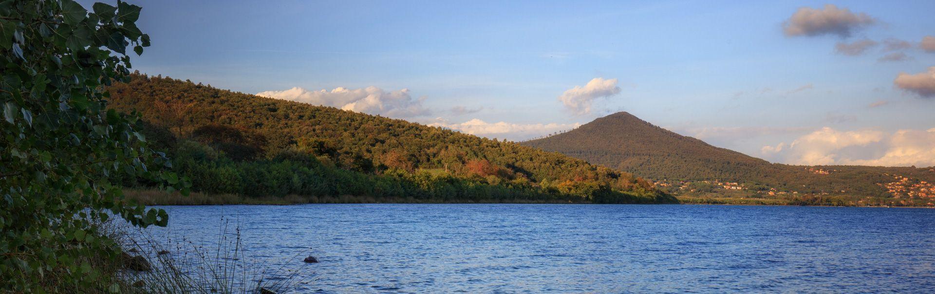 Monte Raschio beech forest